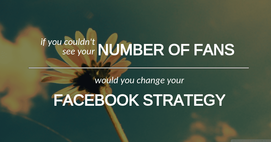 FACEBOOK FAN NUMBERS