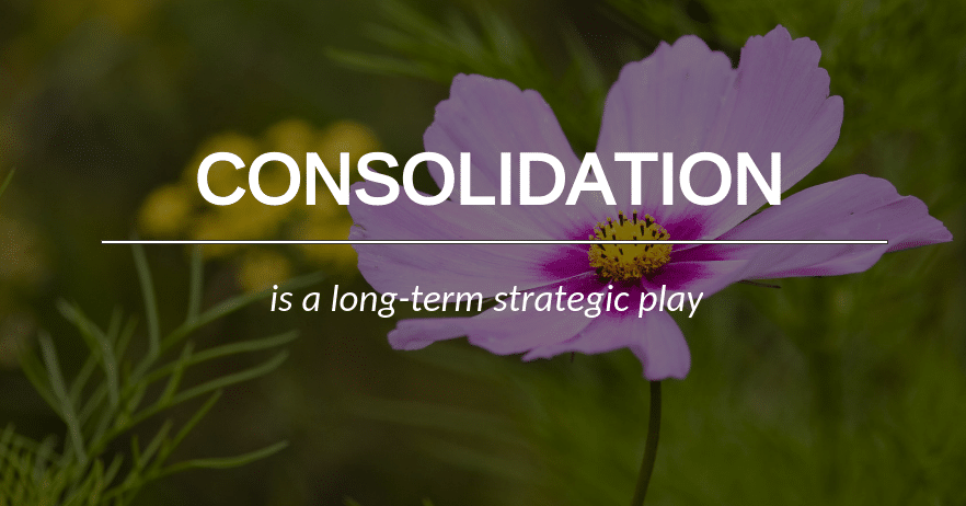 consolidation as a business strategy
